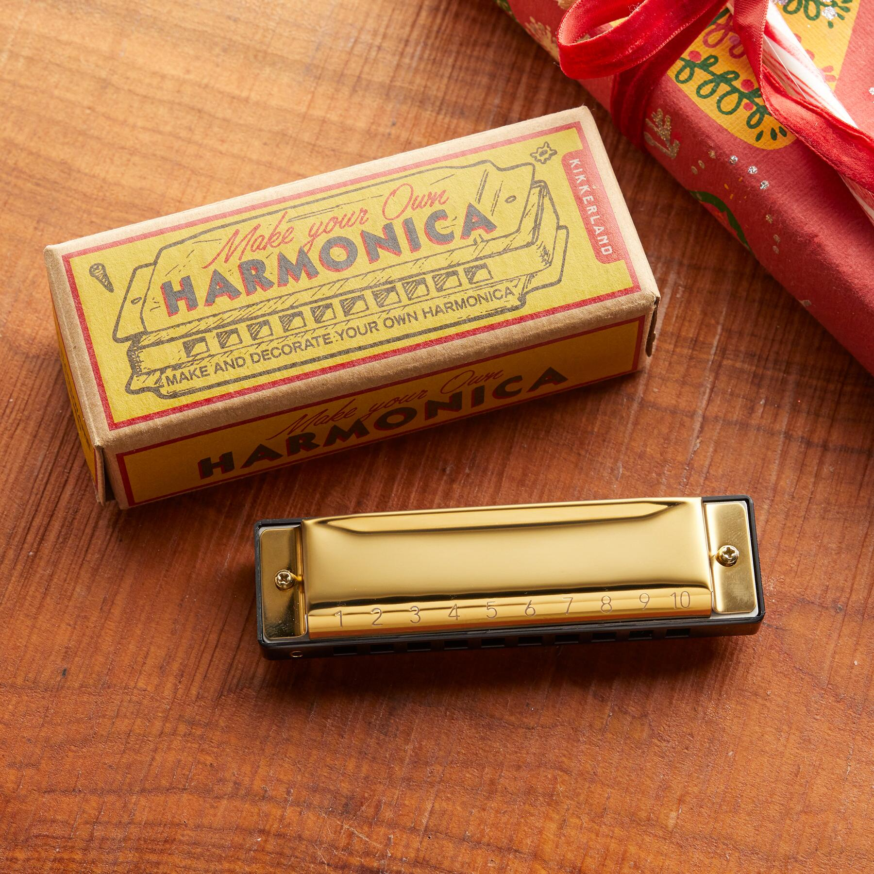 MAKE YOUR OWN HARMONICA: View 1