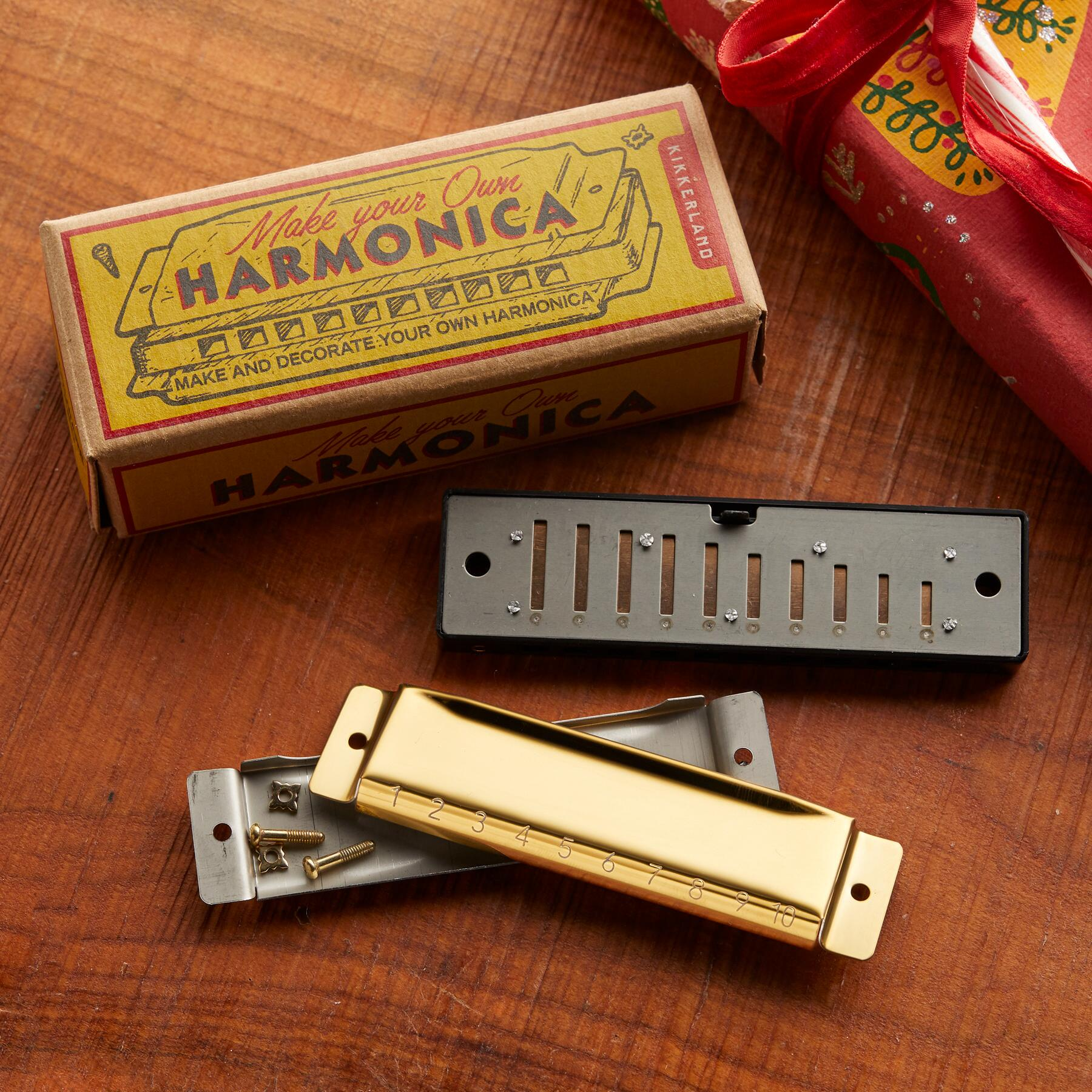 MAKE YOUR OWN HARMONICA: View 2