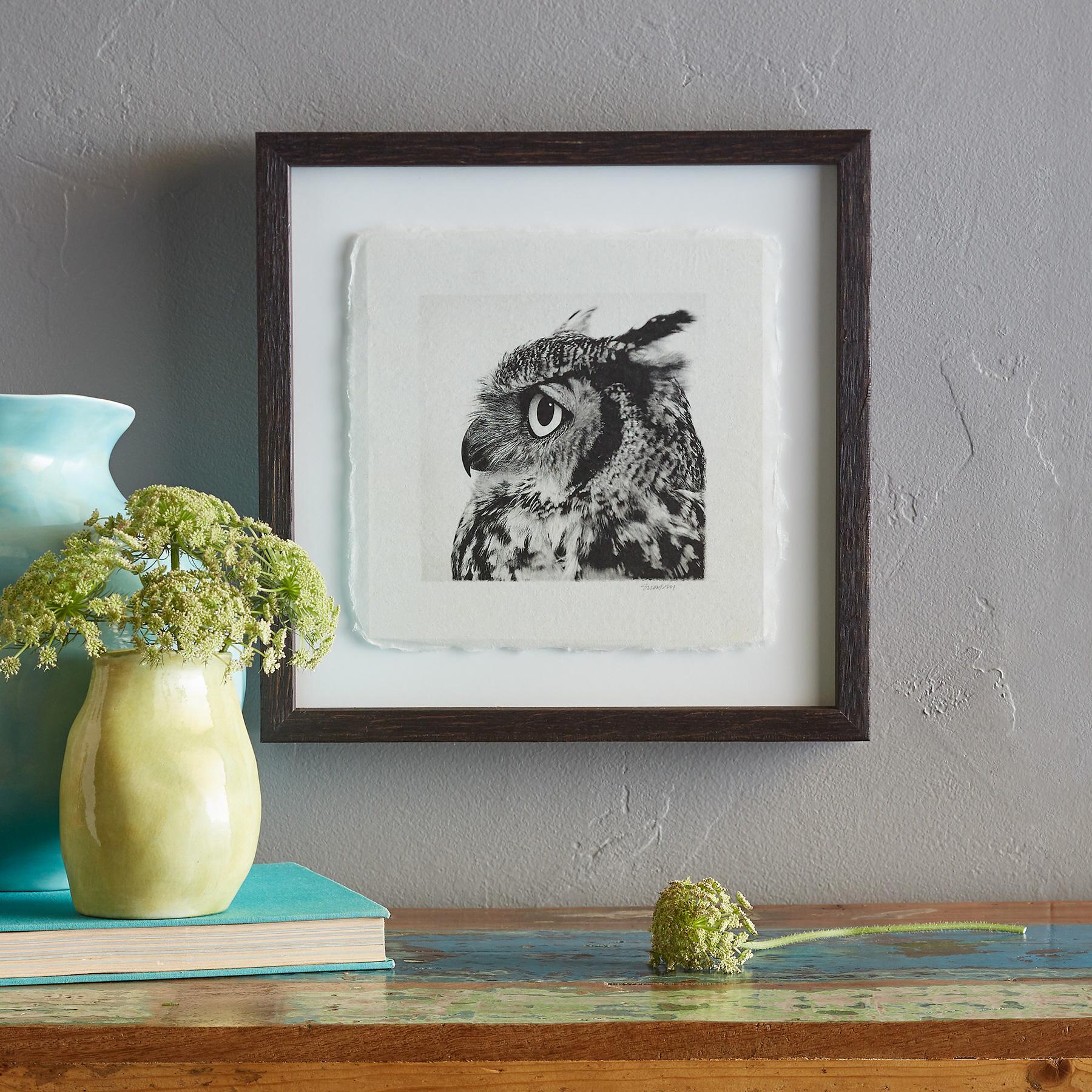 OWL PRINTS: View 2