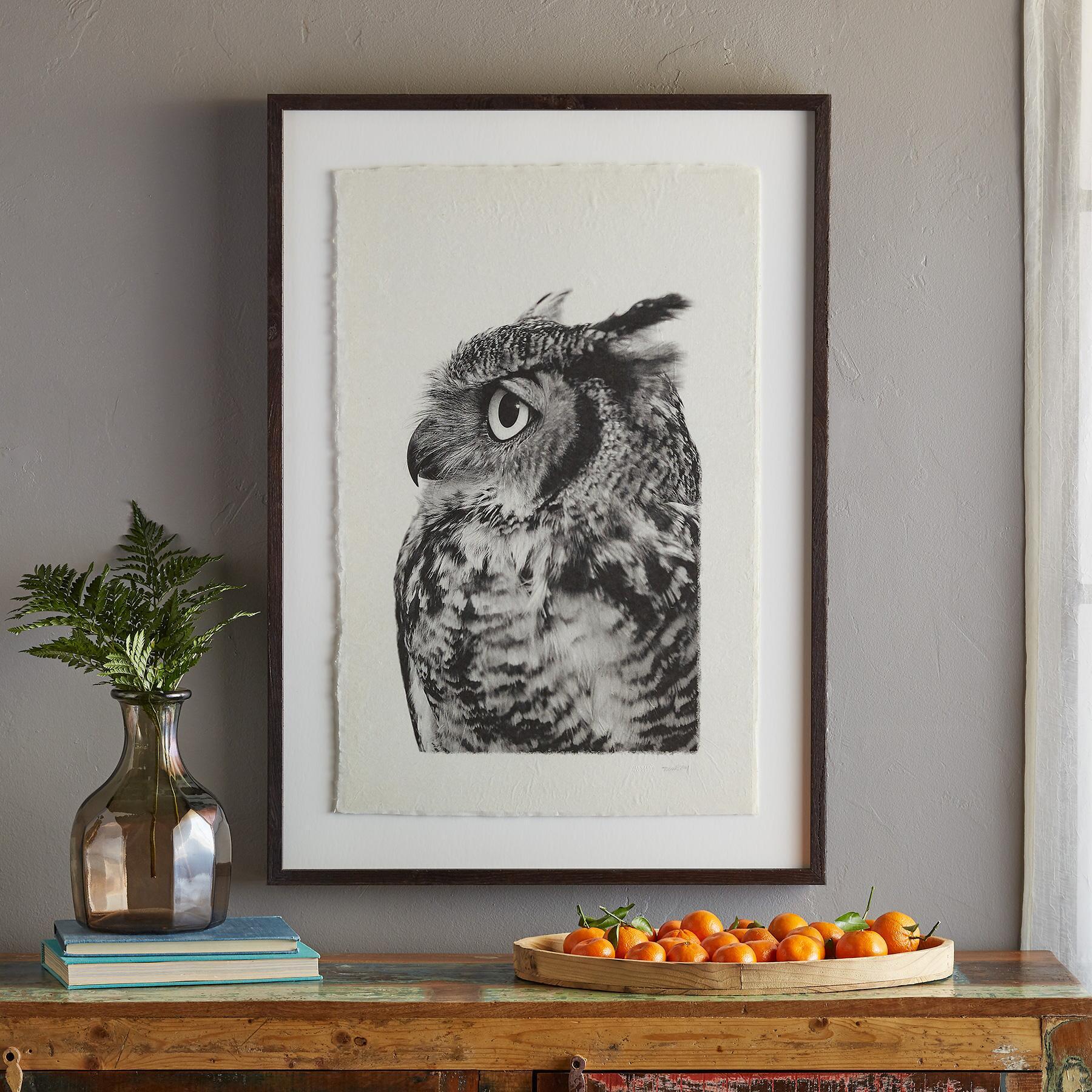 OWL PRINTS: View 3