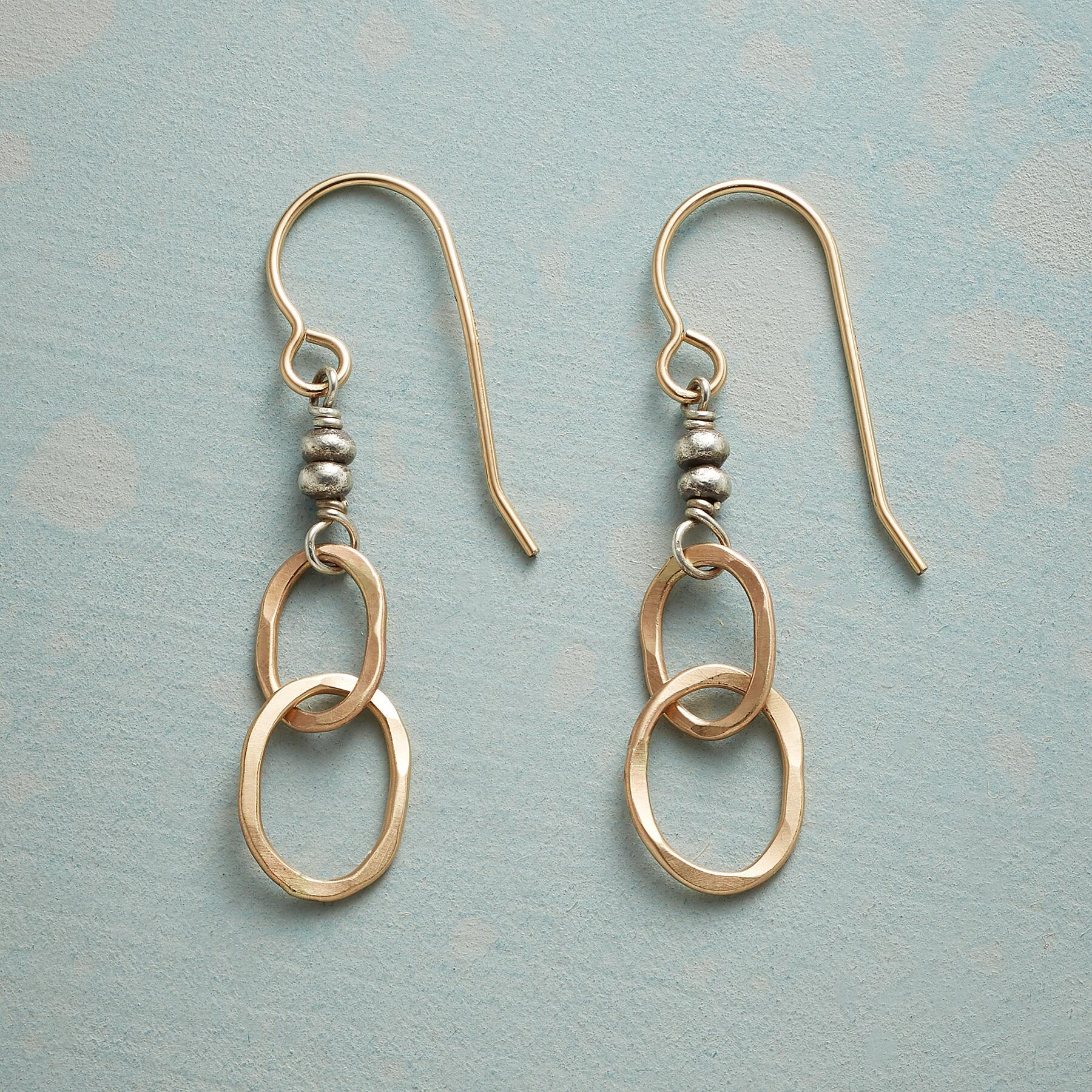 PAIR SHARE EARRINGS: View 1