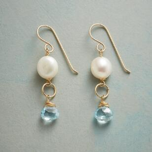 BLUEBIRD SONG EARRINGS