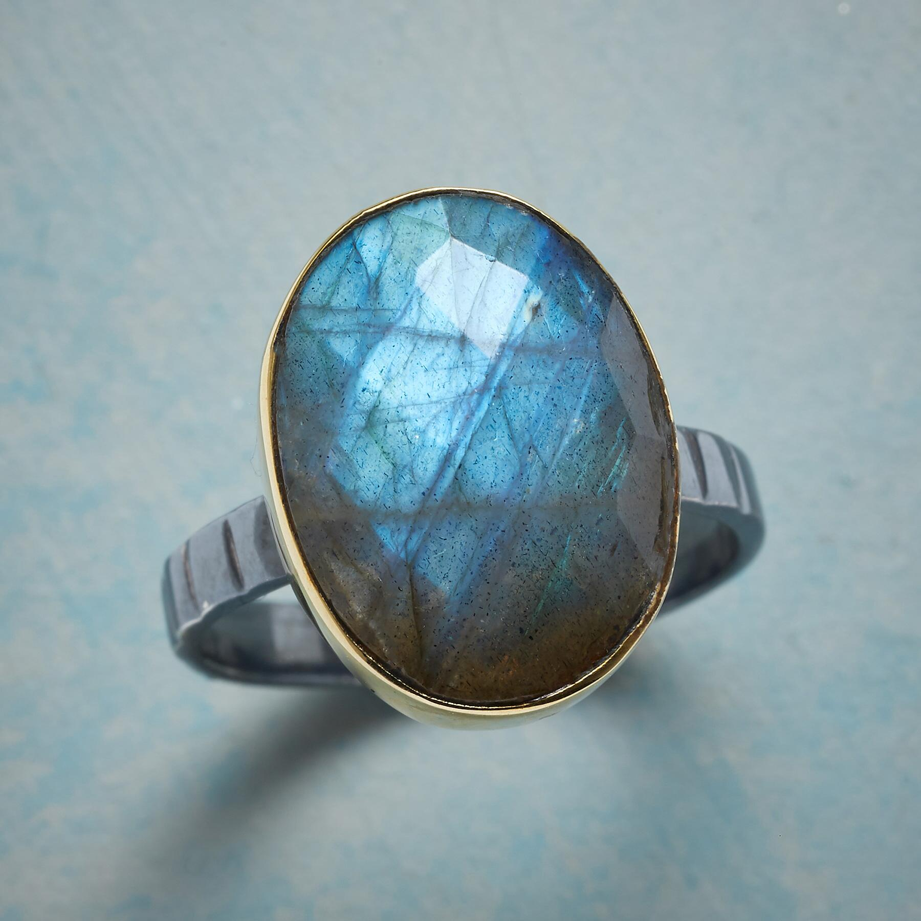 ENRAPTURE RING: View 1