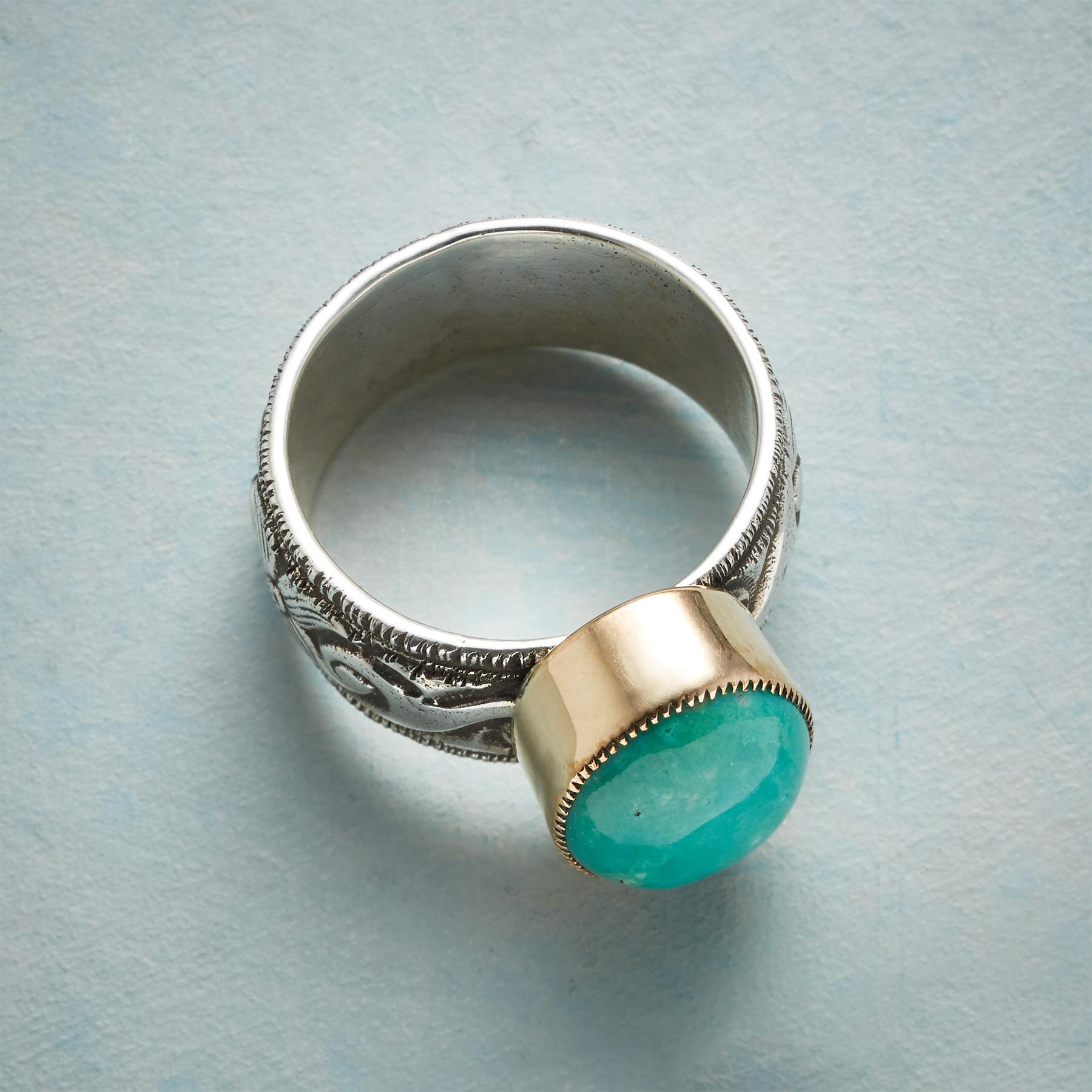 PERFECTLY PAIRED RING: View 2