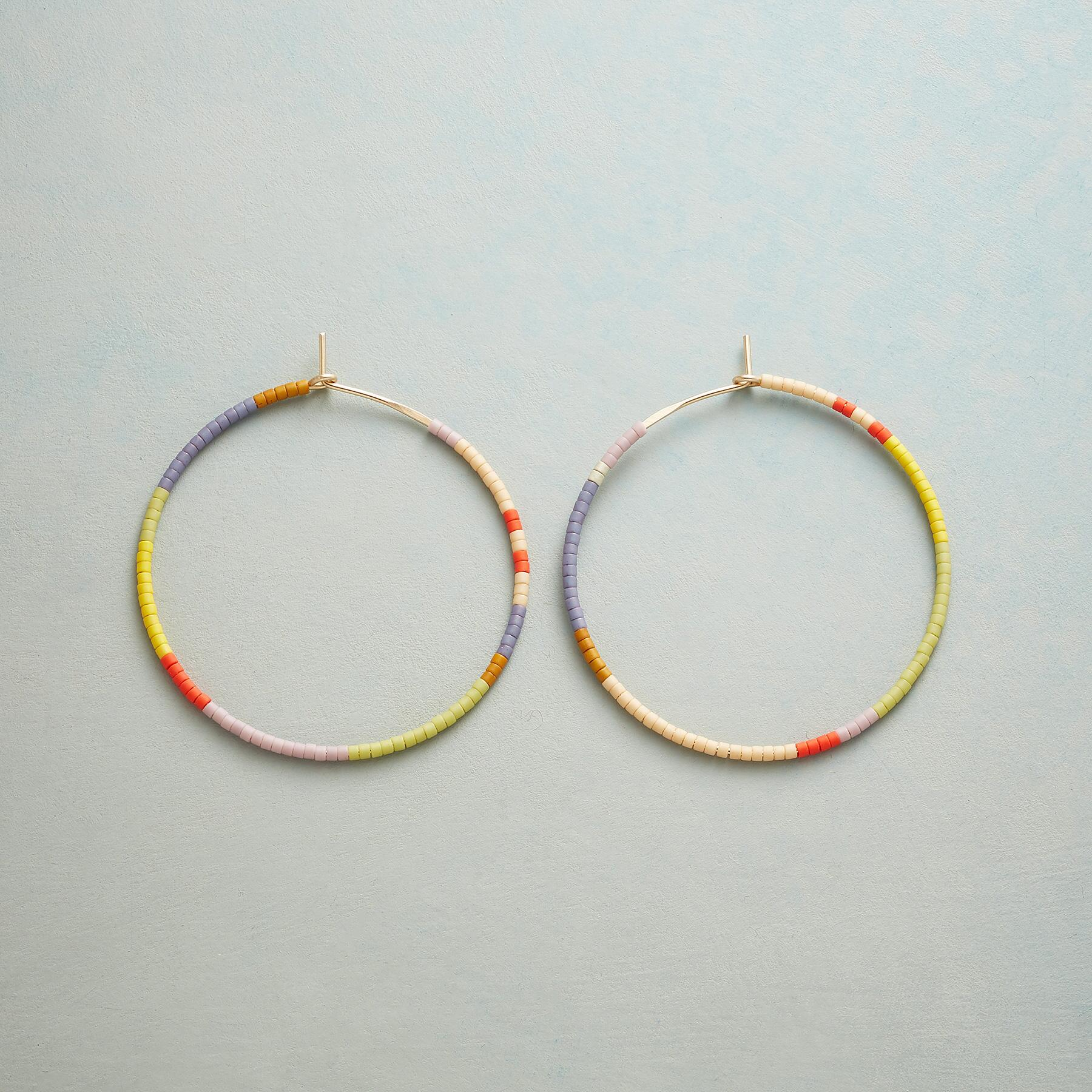 COLOR HORIZONS EARRINGS: View 1