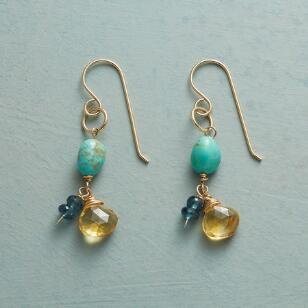 SUNSATIONAL EARRINGS