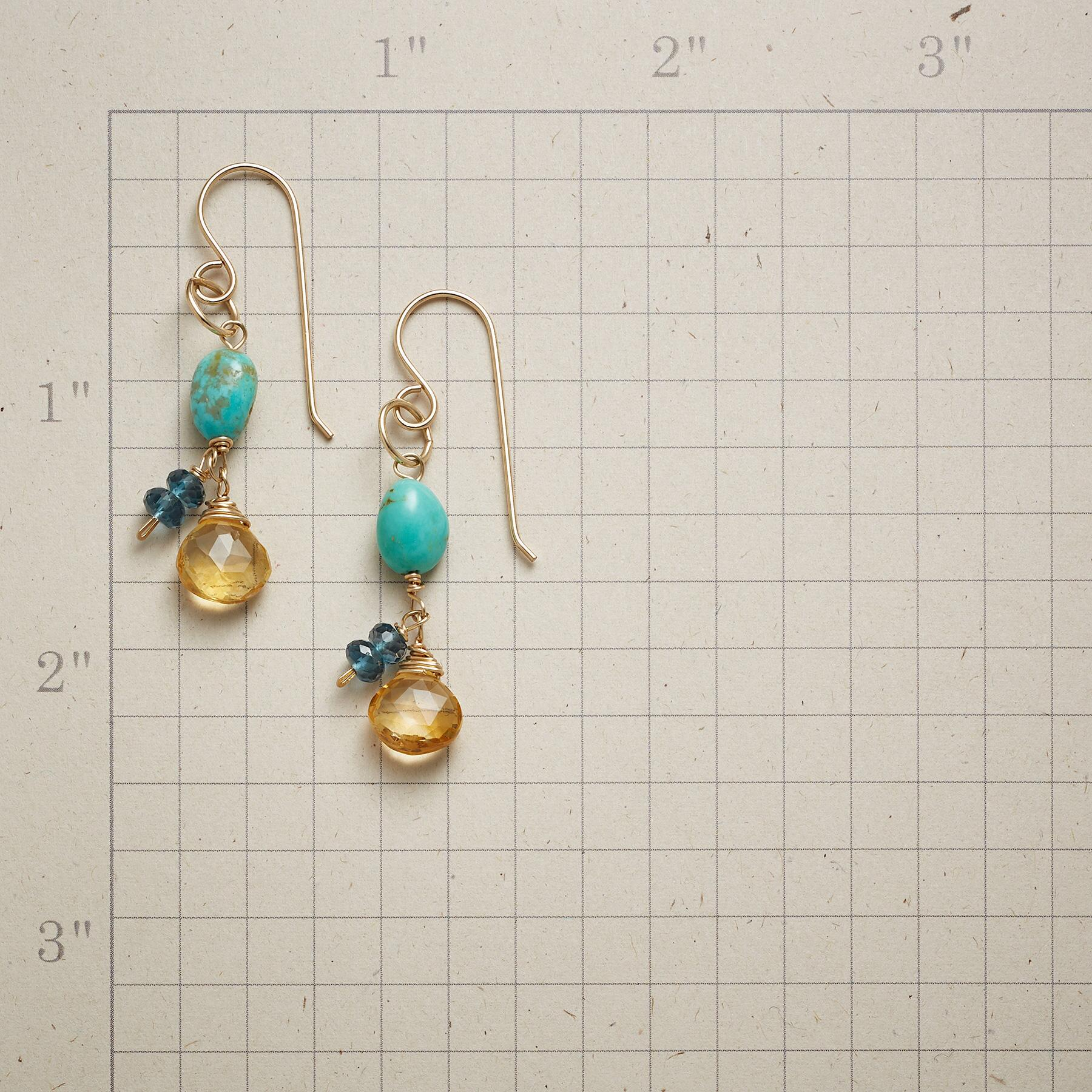 SUNSATIONAL EARRINGS: View 2