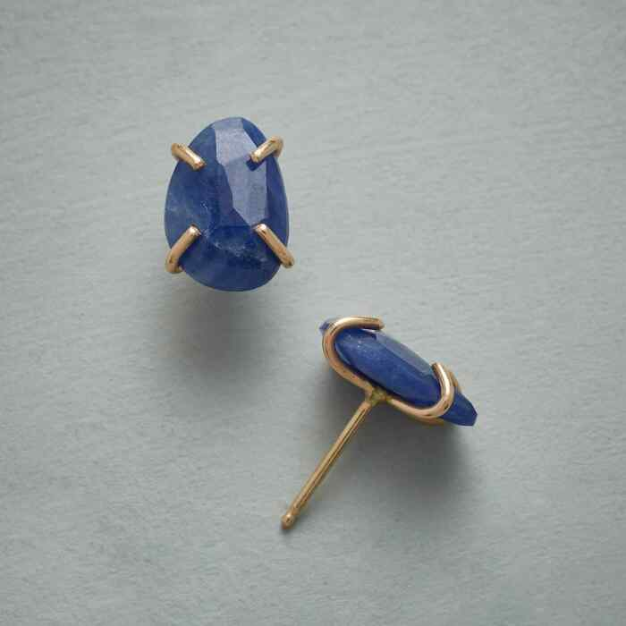 WILD INDIGO EARRINGS