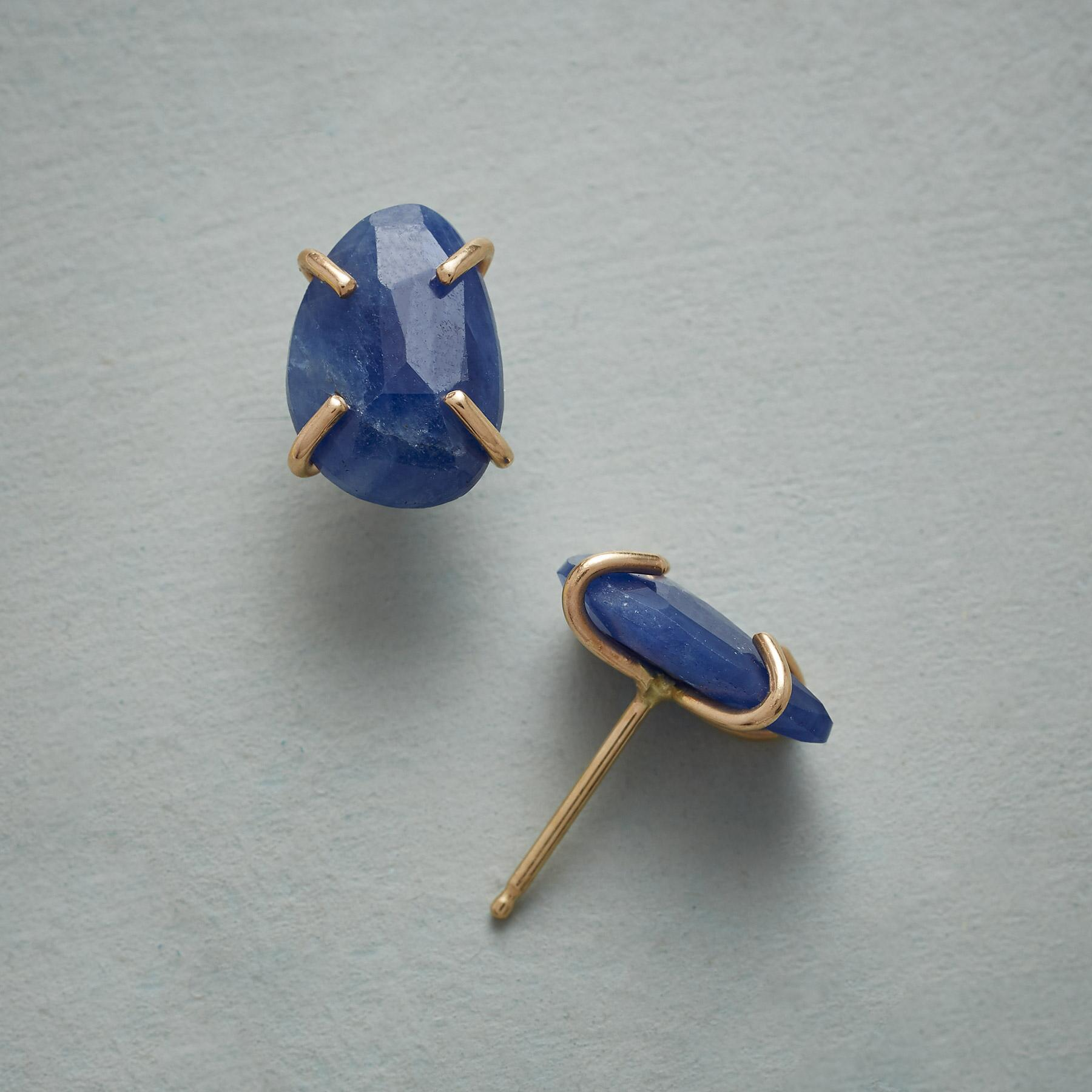 WILD INDIGO EARRINGS: View 1