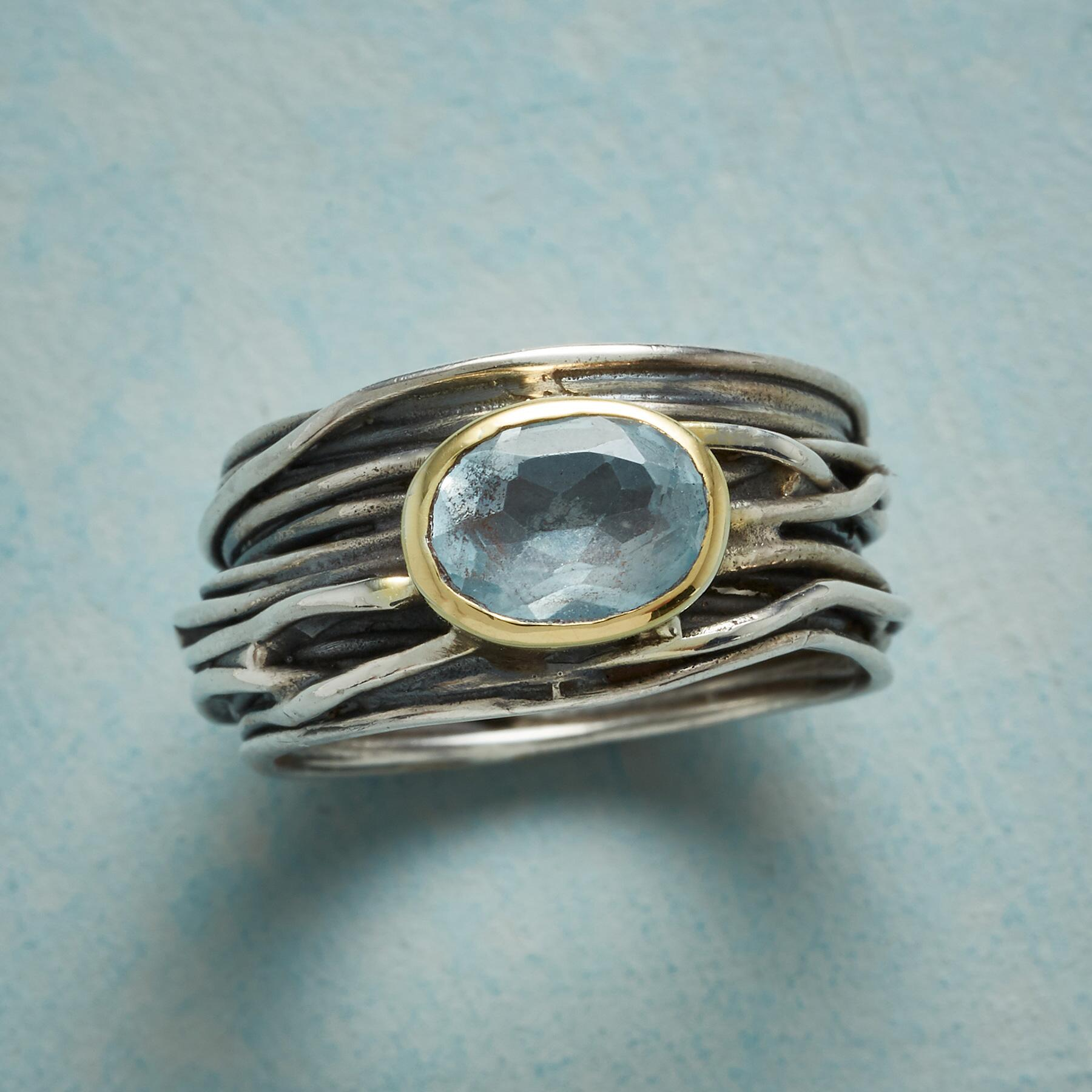 ROBIN'S NEST RING: View 1