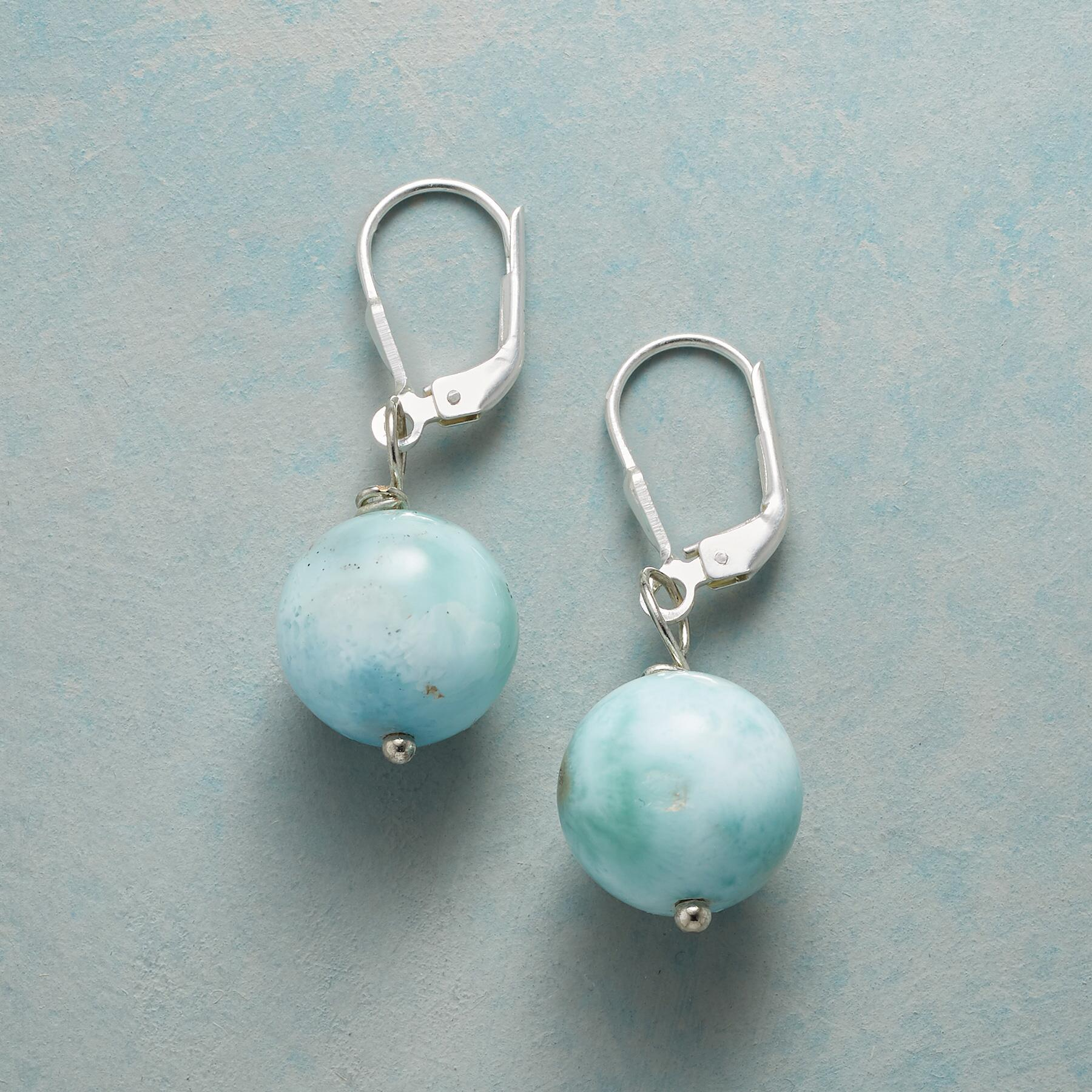 SMALL WORLD EARRINGS: View 1