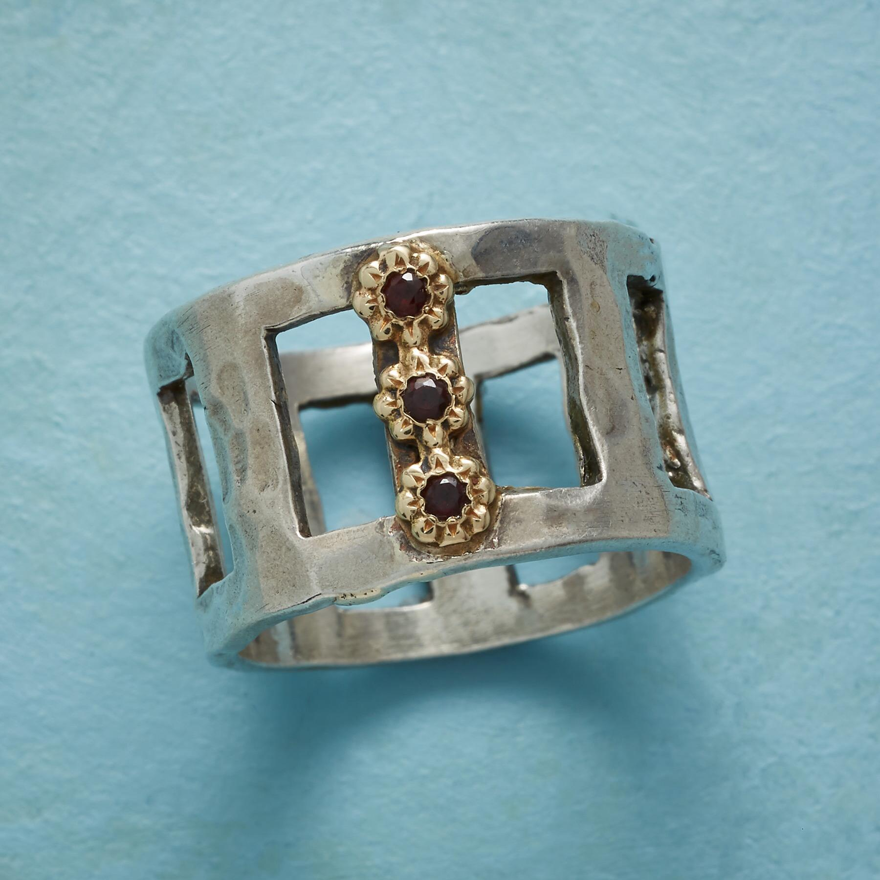 TUILIERIES GARDEN RING: View 1