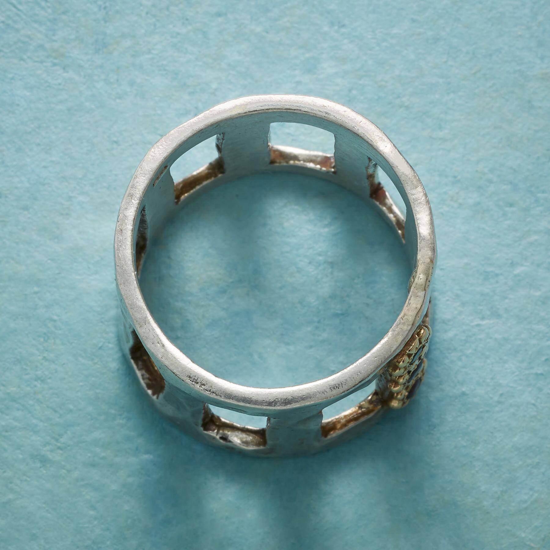 TUILIERIES GARDEN RING: View 2