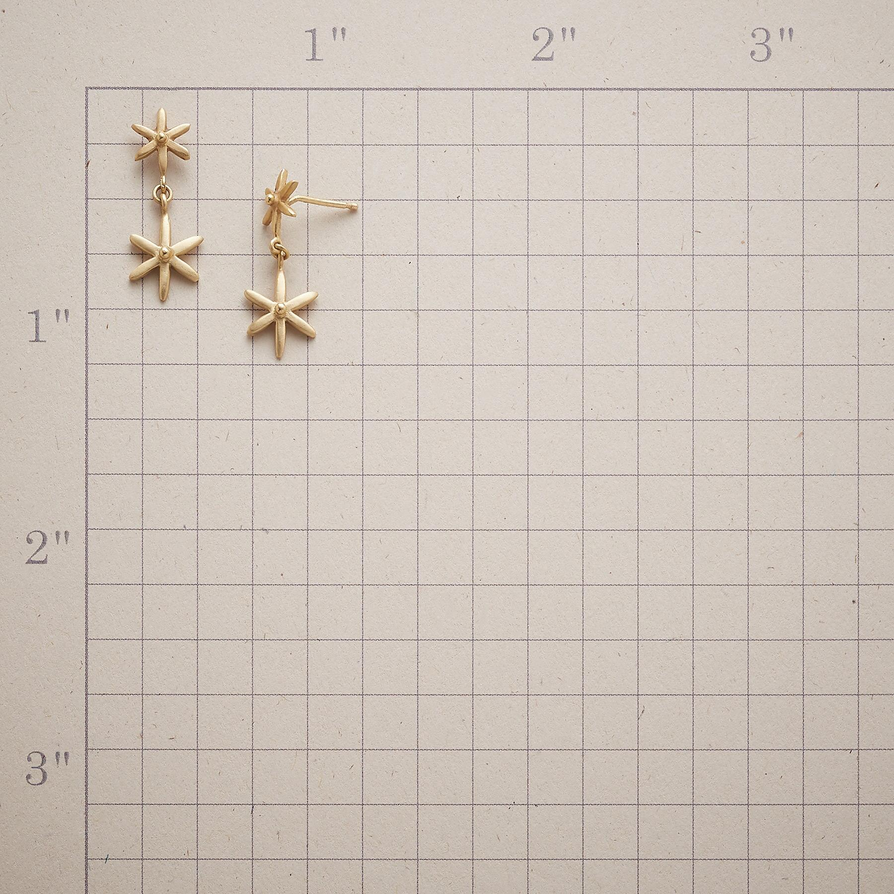 STAR POWER EARRINGS: View 2