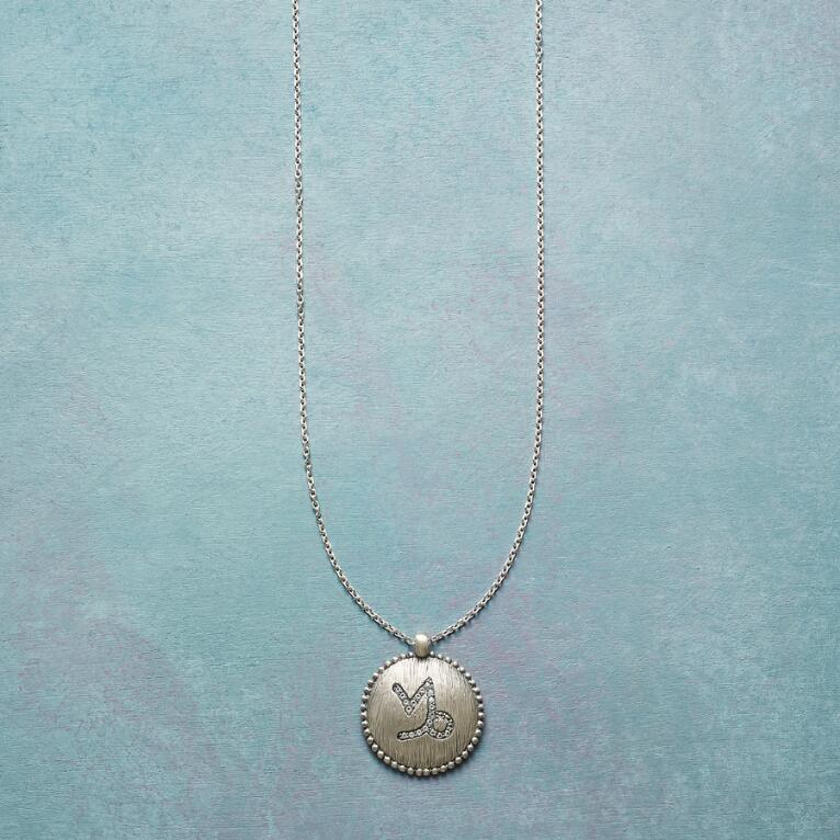 LOOK TO THE STARS ZODIAC NECKLACE