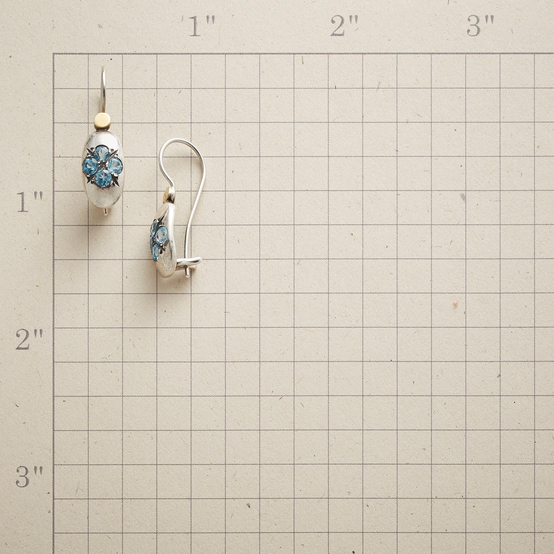 BLUE LADYBIRD EARRINGS: View 2
