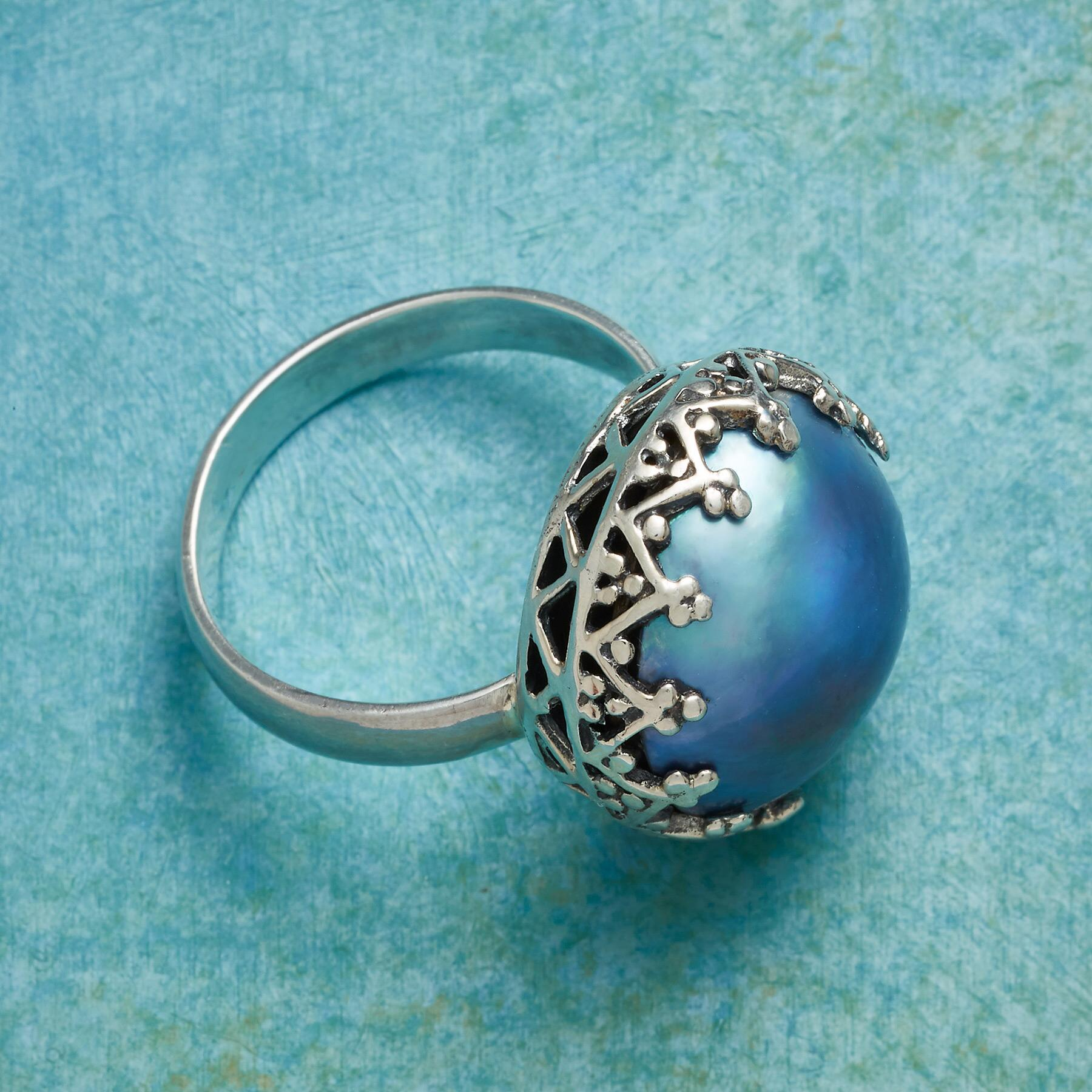 NORTHERN SEAS RING: View 2