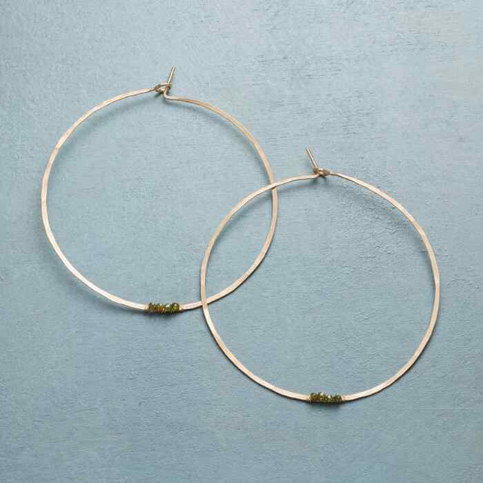 FRESH TAKE HOOPS