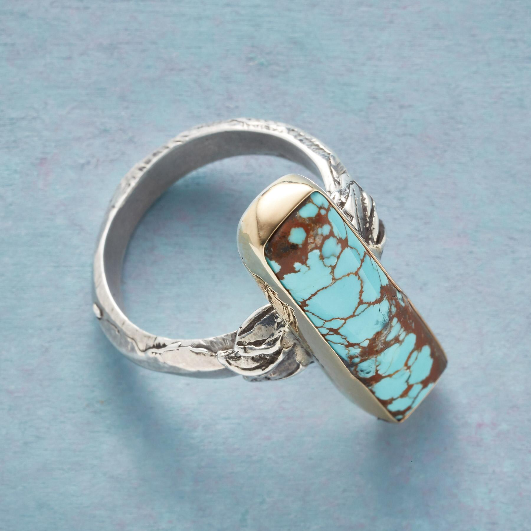 PAINTERLY POSSIBILITIES RING: View 2