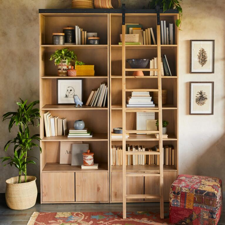 LIBRARY BOOKCASE & LADDER
