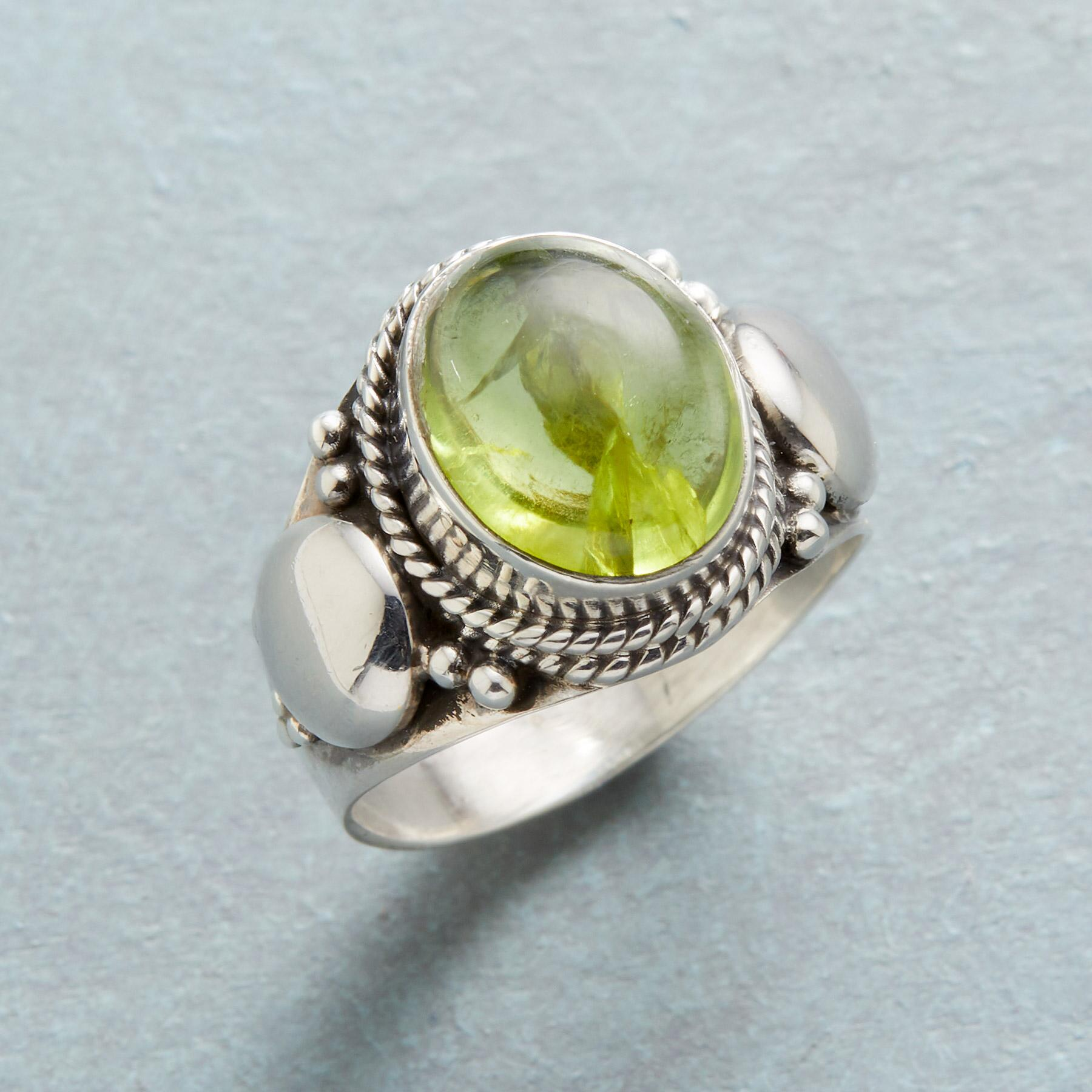 KELP FOREST RING: View 1