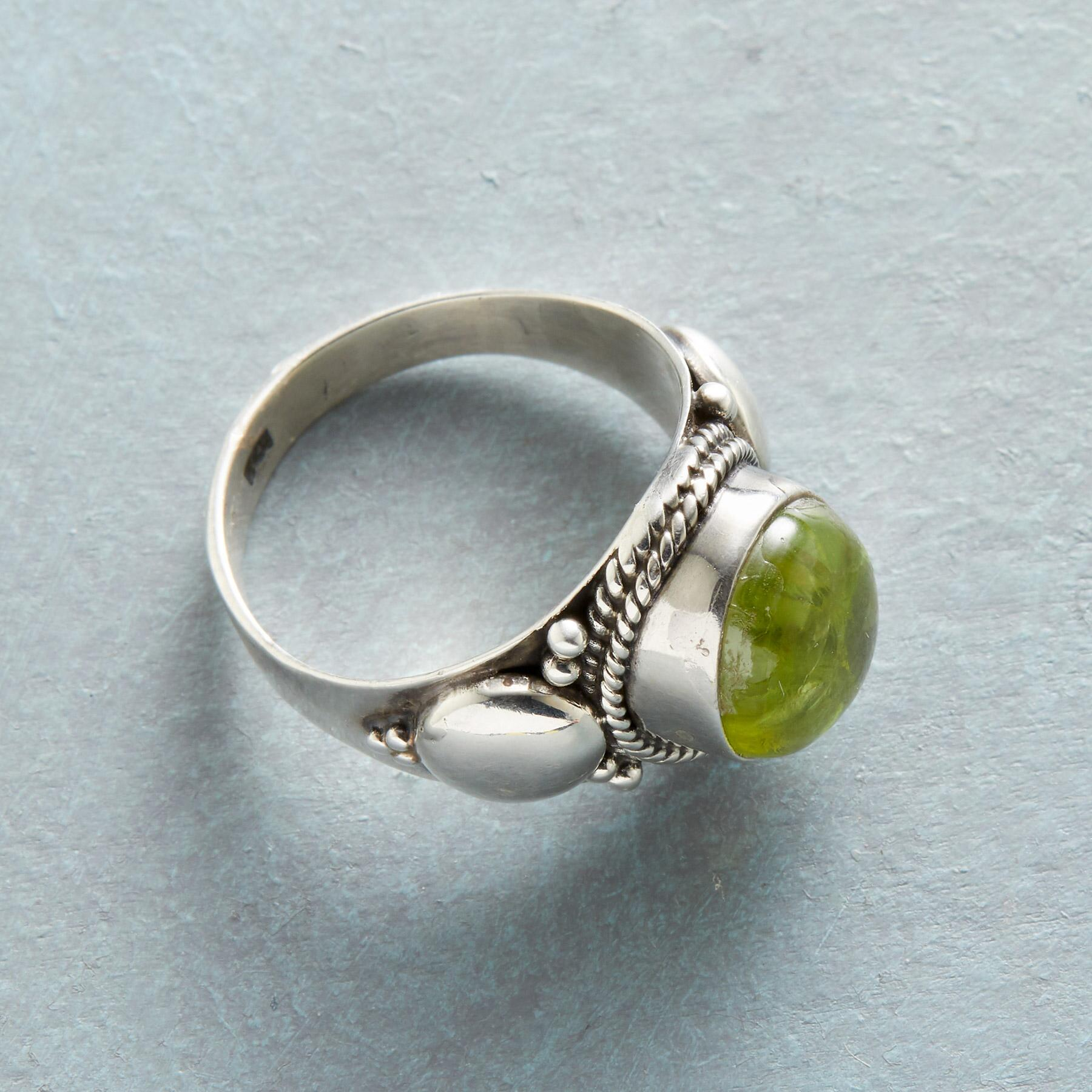 KELP FOREST RING: View 2