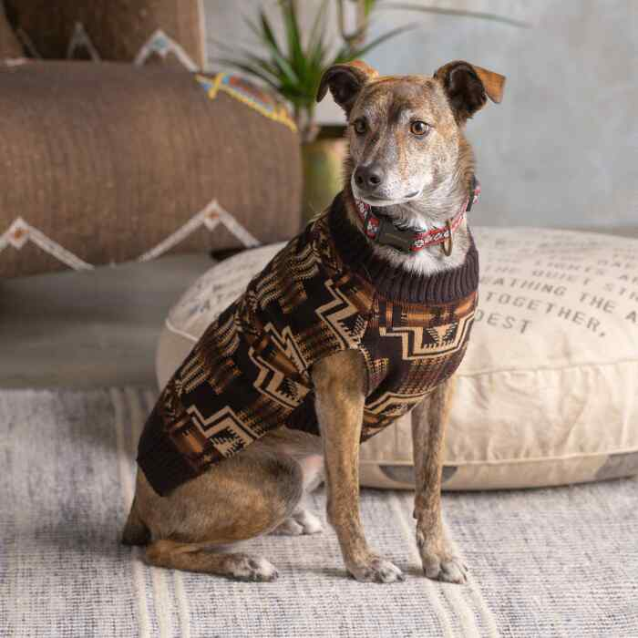 PENDLETON DOG SWEATER