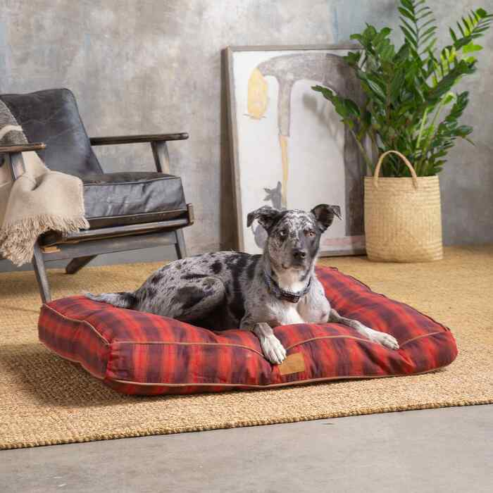 PENDLETON RED PLAID PETNAPPER DOG BED