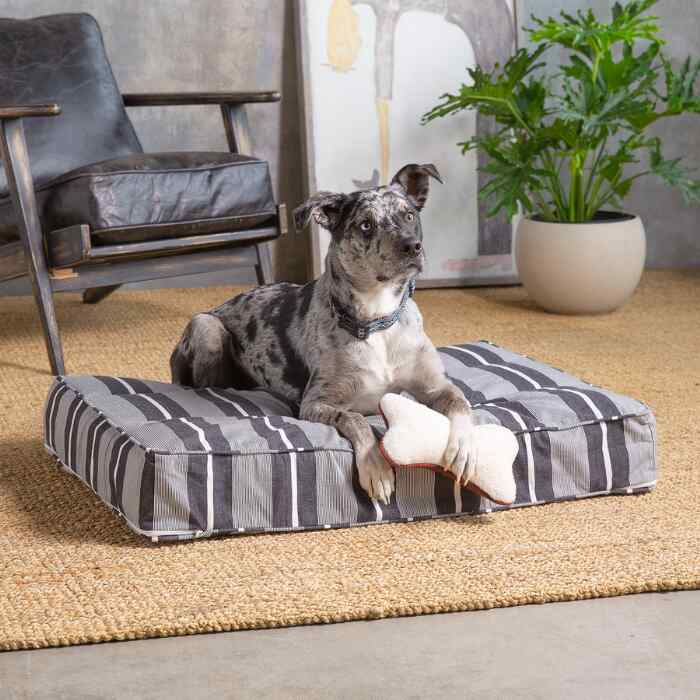 Berkeley Stripe Dog Bed, Medium