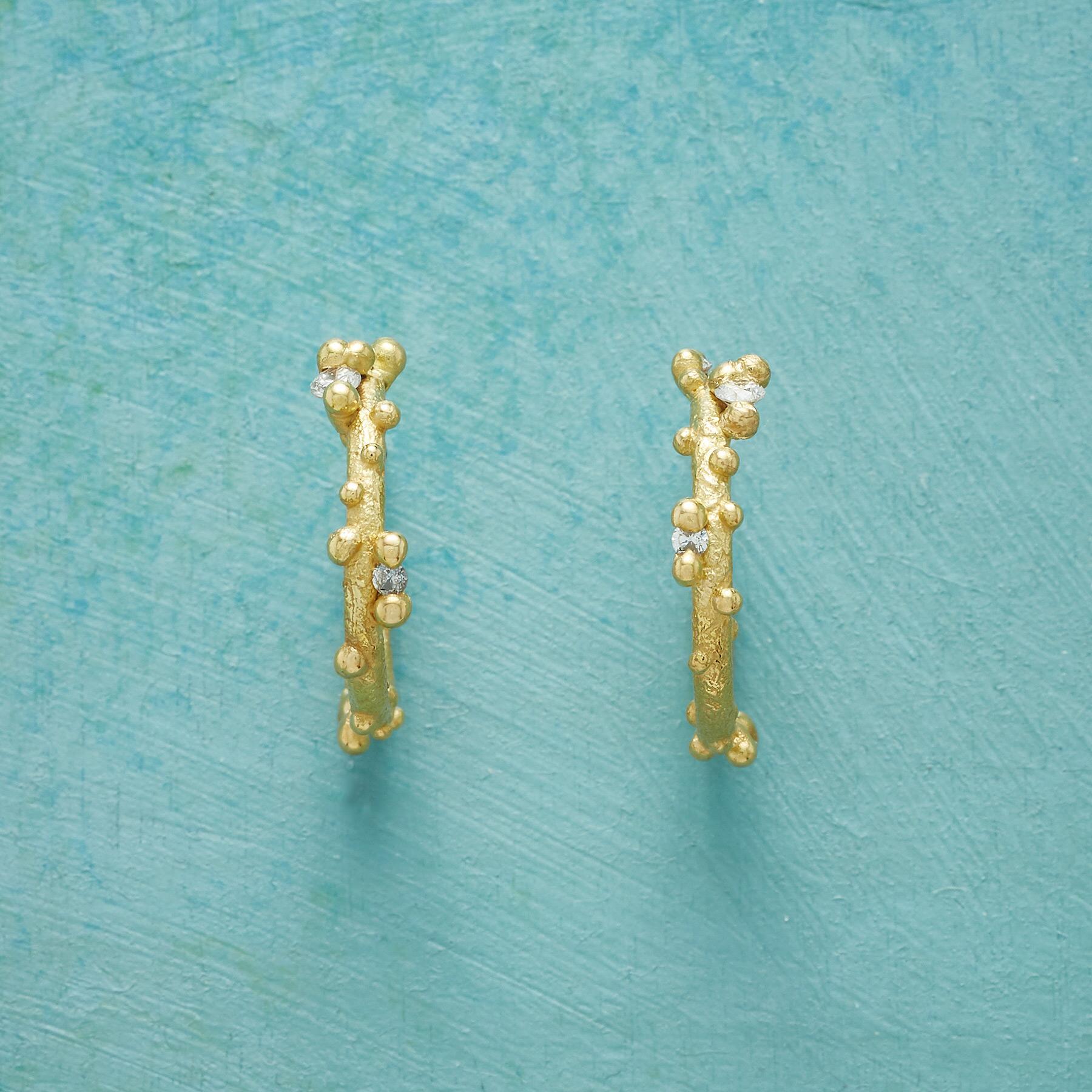 DIAMOND WILLOW HOOP EARRINGS: View 1