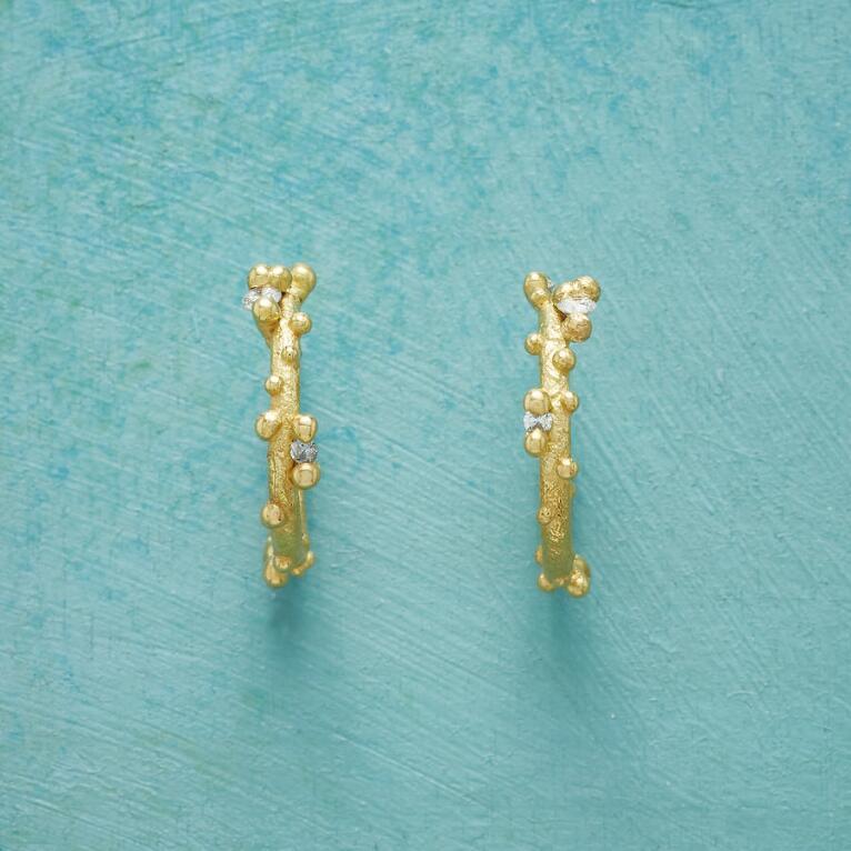 DIAMOND WILLOW HOOP EARRINGS
